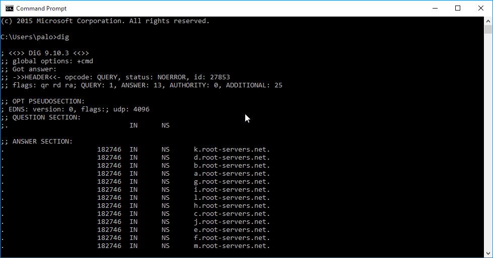How to install dig dns tool on windows 10 nil network.